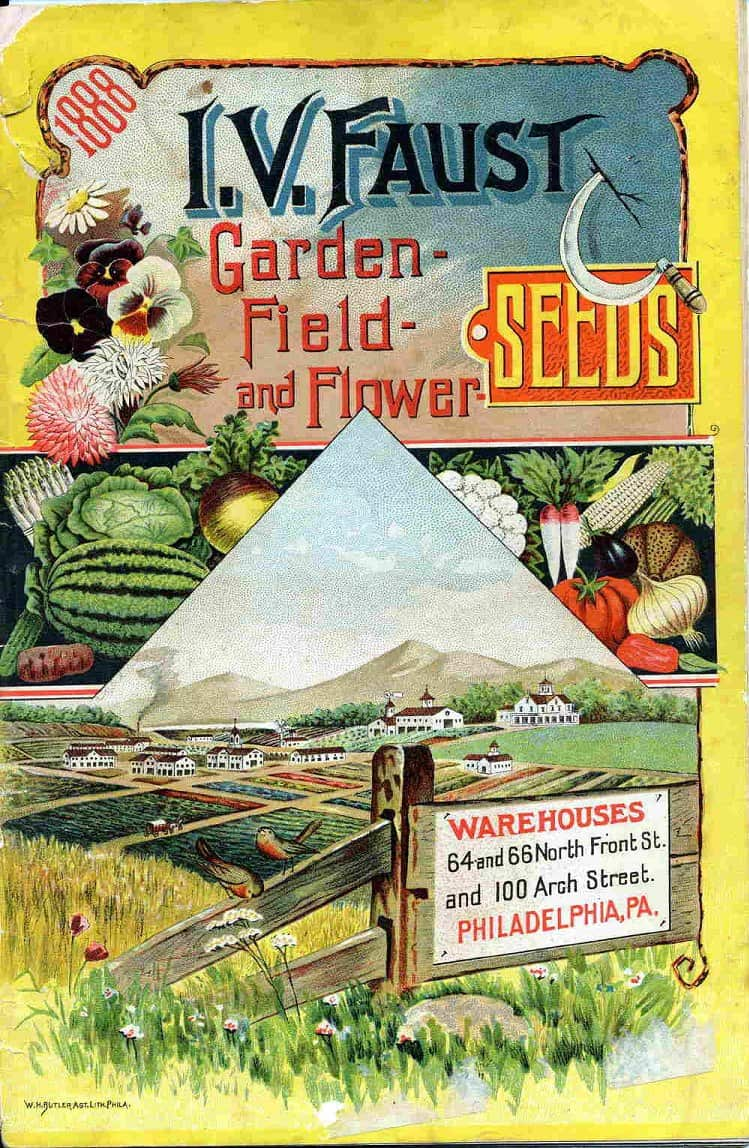 Image result for vintage seeds