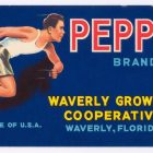 Pepper Brand Fruit Crate Label