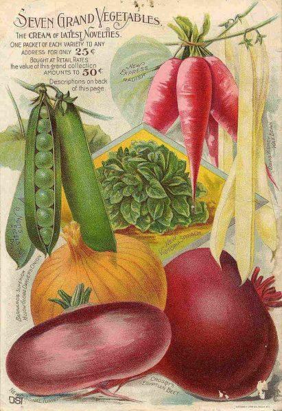 Seven Grand Vegetables Vintage Advertisement Poster