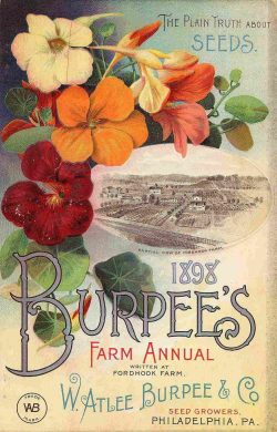 1898 Burpee's and Company Seed Co. Vintage Advertising Poster
