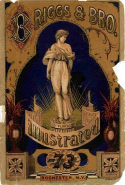 Riggs and Bro Antique Seed Advertising Poster