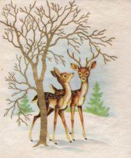 Christmas-Cards-V3 (12)