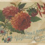 postcard-v2 (1)